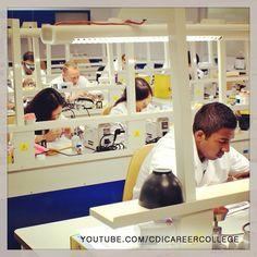 Dental technician program students are busy at work at the CDI College Surrey Campus #dental #technician #dentaltechnician #cdicollege #college #surrey #bc #dentistry #lab #laboratory #brandnew #students #sculpting #dentalart #art #dentures #faketeeth #teeth