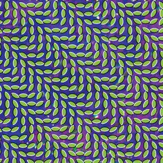 "#14: ""Merriweather Post Pavilion"" by Animal Collective - listen with YouTube, Spotify, Rdio & Deezer on LetsLoop.com"