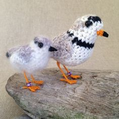 Family of piping plovers, tiny seaside birds, from Jose Heroys Fibre Artist