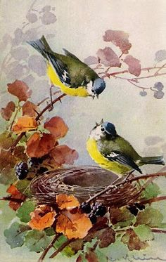 Interior&Decor: Catherine Klein. Птицы. Часть 1
