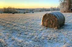 Hay Bales on Ice (by William and Lisa Roberts)