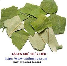 lá sen khô giá rẻ tại hà nội.  Xem chi tiết tại: www.trathuylieu.com (Hotline/Zalo: 0904.76.09040