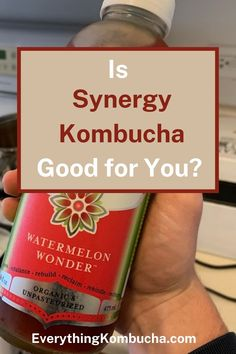 GT'S Synergy Kombucha is one of the most popular brands of kombucha you'll find at the store. Most people know that in general, kombucha is pretty healthy. But since ingredients and recipes can vary so much from brand to brand, you may wonder whether Synergy Kombucha is a good kombucha to be drinking. To find out, tap on the pin to read my article! #kombucha #synergy #GTDave #probiotic #review Kombucha Health Benefits, Sugar Substitute, Pretty Good, Watermelon, Drinking, How To Find Out, Alcohol, Organic, Popular