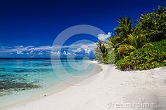 Beautiful Tropical Beach Landscape In Maldives - Download From Over 29 Million High Quality Stock Photos, Images, Vectors. Sign up for FREE today. Image: 49017432