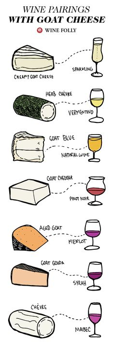Awesome wine pairings to try with Goat cheese. by Wine Folly