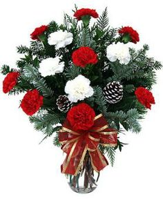 Christmas Carnations are the perfect present for friends and family this holiday season. Red and white carnations are arranged with Christmas greens and pine cones to create a beautiful holiday bouquet. Save a ton on gifts this year and send to all your friends and family!