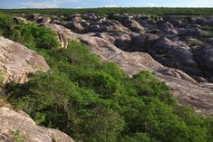 Paisagem típica do Parque Nacional Serra das Confusões - Foto: Eraldo Peres
