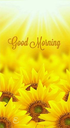 Are you searching for inspiration for good morning funny?Check out the post right here for unique good morning funny inspiration. These unique quotes will make you happy. Good Morning Cards, Good Morning Sunshine, Good Morning Picture, Good Morning Flowers, Morning Morning, Good Night Image, Good Morning Messages, Good Morning Good Night, Morning Pictures