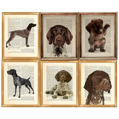 Ideal gift for family friends and Dog Lovers Luggage Tag German Shorthaired Pointer Gift