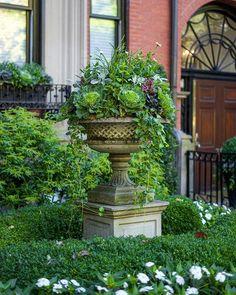 Private Newport (@privatenewport) • Instagram photos and videos Outdoor Spaces, Outdoor Living, Outdoor Decor, Landscape Design, Garden Design, Container Flowers, Dream Garden, Newport, Container Gardening
