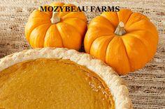 http://www.ebay.com/itm/4-Ounces-SUGAR-PIE-PUMPKIN-SEEDS-Premium-USA-Seeds-Heirloom-Non-GMO-/281387369260?pt=LH_DefaultDomain_0  4 Ounces SUGAR PIE PUMPKIN SEEDS. Premium USA Seeds. Heirloom. Non-GMO.
