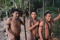 Worse Than Even Genocide Amazon Rainforest, First Contact, The Outsiders, Photos, Swimwear, People, Life, Brazil, Deep
