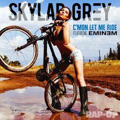 Disco di Skylar Grey con Eminem