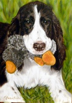 Rusty and Duck 5x7  Another beautiful portrait by Cindy Brassfield! Crbrassfield.com