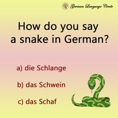 Wise Decisions, German Language Learning, Social Link, I Want To Work, Global Citizen, Learn German, Future Career, Feeling Happy, Getting To Know
