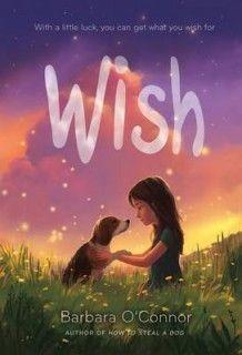 Wish av Barbara O'Connor (Innbundet)