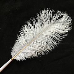 decor z gallerie gold dipped feather pens z gallerie fun feather ...  Z Gallerie Ostrich Feathers