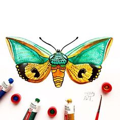 """Hi! Day 35 of my challenge #100daybutterflies #100daychallenge inspired by the moth """"Eudocima Salaminia"""" can be found in Australia it occurs in Northern Territory, Queensland, New South Wales. #arts_help #art_empire #imaginationarts #artdaily #art_spotlight #challenge #art  #illustration #butterfly #handdrawnart #valleyofbutterflies #nature #phooftheday #doodle #love #bw #rtistic_feature #featuregalaxy #creative_instaarts  #me #worldbutterflies #happy #watercolor #acrylic #paint…"""