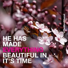 He Has Made Everything Is Beautiful In Its Time! #TheWordShared