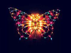 Pillangós világítás Butterfly, Butterflies
