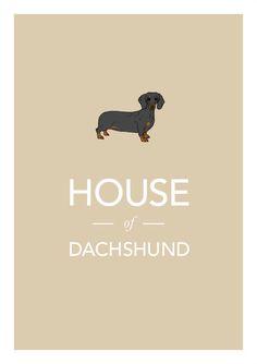 Dachshund print póster