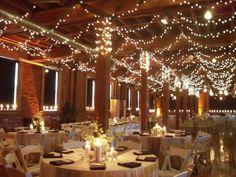 Wedding Lights 1-- indoor/outdoor option