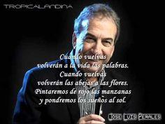 JOSE LUIS PERALES CUANDO VUELVAS  (LETRA) (+lista de reproducción)