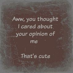 Aww, you thought I cared about your opinion of me. That's cute.
