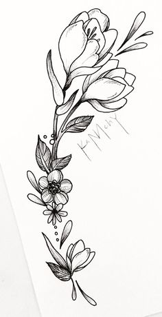 morning glory coloring pages Simple Flower Drawing, Flower Art, Floral Tattoo Design, Tattoo Designs, Geometric Tattoo Nature, Floral Doodle, Beautiful Flower Tattoos, Flower Sketches, Tattoo Outline