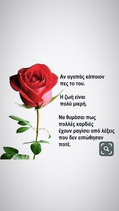 Greek Words, Love, Quotes, Greek Sayings, Amor, Quotations, Quote, Shut Up Quotes