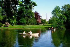 Bois de Boulogne : La campagne à la ville. https://www.bubble-globe.fr/experience/1138-balade-champetre-bois-de-boulogne