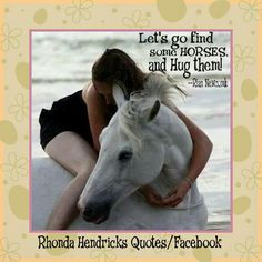 Personal fondness for white horses . All The Pretty Horses, Beautiful Horses, Animals Beautiful, Cute Animals, Horse Girl, Horse Love, Majestic Horse, Clydesdale, White Horses