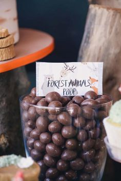 Chocolate Forest Animal Poop from a Woodland Birthday Party on Kara's Party Ideas Baby Boy 1st Birthday Party, Fairy Birthday Party, Birthday Ideas, First Birthday Parties, Forest Party, Woodland Party, Woodland Theme, Babyshower Party, Party Decoration