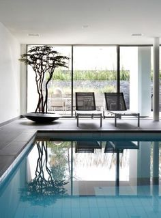 inside home pool + oriental tree Interior Architecture, Interior And Exterior, Interior Design, Villa, Inside Pool, Beautiful Pools, Beautiful Places, Indoor Swimming Pools, Blog Deco