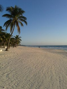 To reach the Tulum beaches outside of the ruins, take the Coba road east in the direction of Boca Paila and bear right on the Tulum beach road