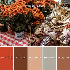 Market, flowers, corn and pot Color Palette Modern Color Palette, Fall Color Palette, Colour Pallete, Color Palettes, Color Combinations, Color Schemes, Halloween Coloring, Colour Board, Color Blending