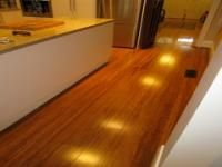This is the Bamboo Flooring we are laying in the house...... colour is CHESTNUT ....