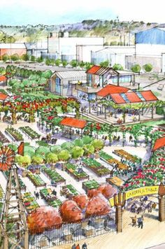 Fresh initiative to engage children with horticulture revealed for Wynyard Quarter, NZ