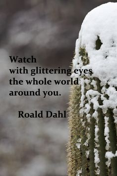 """Watch with glittering eyes the whole world around you."" -- Roald Dahl"