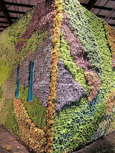 Living Succulent House at San Francisco Flower and Garden Show, via Flickr.