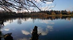 Salish Pond, Fairview