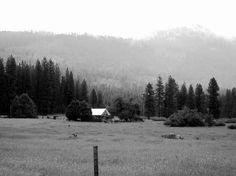 Cabin in the woods near Yosemite