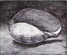 Volute by Shane Jones - etching