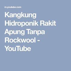 Kangkung Hidroponik Rakit Apung Tanpa Rockwool - YouTube