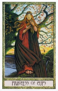 The Druid Craft Tarot ► Princess of Cups