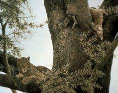 "Robert Bateman - Paintings34 1/4"" x 40"", acrylic Leopard & Thomson Gazelle Kill"