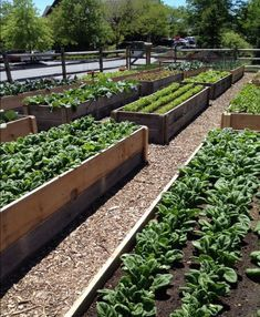 40 Inspiring Vegetable Garden Design for Your Backyard - Garten Garden Types, Herb Garden Design, Veg Garden, Vegetable Garden Design, Easy Garden, Vegetable Gardening, Vegetables Garden, Indoor Garden, Garden Water