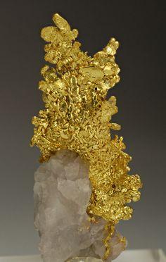 Minerals Minerals Minerals! - Gold on Quartz - Eagle's Nest Mine, Placer Co.,...