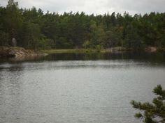 Paradiset - ett naturreservat i Stockholm