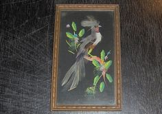 Vintage Bird Picture Real Feathers Hand Made $8 + 5 etsy